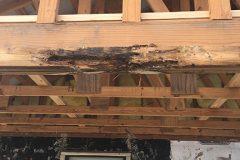 roof-repair-13